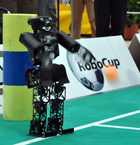 RoboCup 2009: Rudi Throw-in